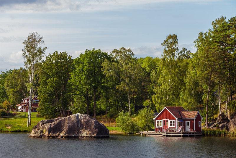 Swedish Pine Tar